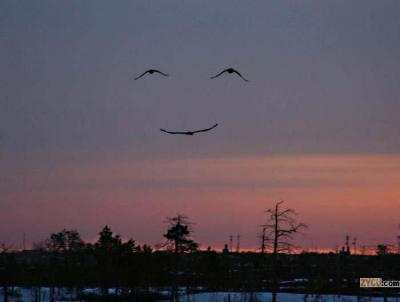 Una sonrisa por favor
